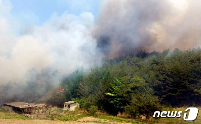 19일 낮 12시25분쯤 경북 봉화군 석포면 석포리 석포면사무소 뒷산에서 불이 나 검은 연기가 치솟고 있다.(봉화군 제공) 2017.5.19/뉴스1 © News1 피재윤 기자