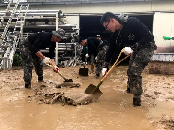 수해 복구에 구슬땀 흘리는 장병들  - 17일 오전 폭우로 물에 잠긴 충남 천안시 동남구 병천면에 육군 제32보병사단 소속 군 장병들이 긴급 투입돼 수해 복구 작업을 하고 있다. 지난 16일 천안 지역에는 평균 182.2㎜의 비가 내려 지하차도 5곳이 물에 잠기고, 차량 32대와 1000여㏊의 농경지가 침수 피해를 입었다. 천안시는 이날 공무원 500여명 등 679명을 투입해 응급 복구 활동을 펼쳤다.천안 연합뉴스