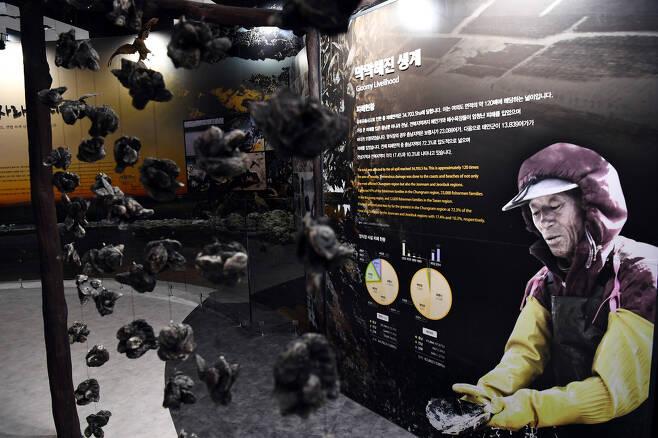 15일 오후 개관한 충남 태안에 위치한 유류피해극복 기념관 내부. 청와대 사진기자단
