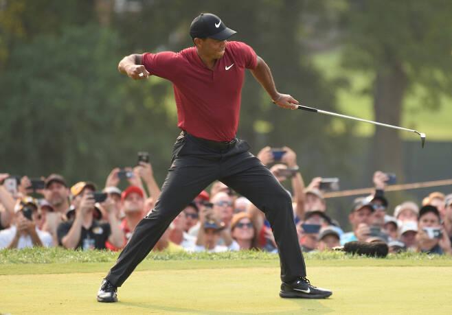 타이거 우즈가 13일(한국시간) 미국 미주리주 세인트 루이스의 벨러리브 컨트리클럽에서 열린 PGA 챔피언십 마지막 날 4라운드 18번홀에서 버디를 성공시킨 뒤 환호하고 있다. (사진=AFPBBNews)