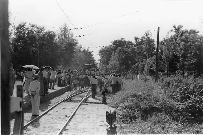 1955년 임인식 작가가 촬영한 뚝섬 전동차 정거장. 해마다 여름이면 동대문과 뚝섬을 오가는 전동차는 사람들로 꽉 찼다.