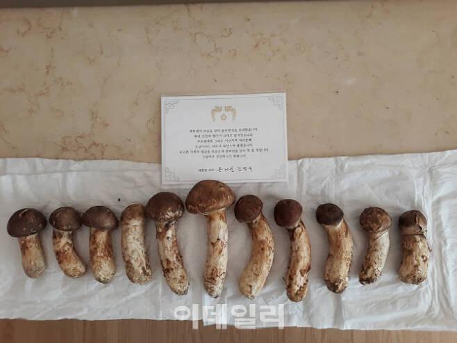 우원식 더불어민주당 의원의 어머니가 문재인 대통령을 통해 받은 김정은 북한 국무위원장의 송이버섯 선물. (사진=우원식 더불어민주당 의원 페이스북)