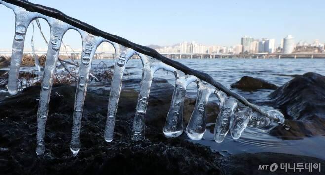 아침 서울 기온이 영하 11.8도까지 내려가며 올 겨울 들어 가장 추운 날씨를 보이는 9일 오전 서울 여의도 한강공원 강변에 고드름이 얼어있다. /사진=김휘선 기자