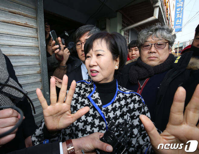 손혜원 무소속 의원. © News1 황희규 기자