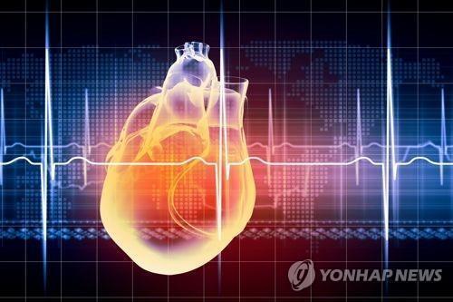 심장 [게티이미지뱅크 제공]   [2020.05.20 송고]