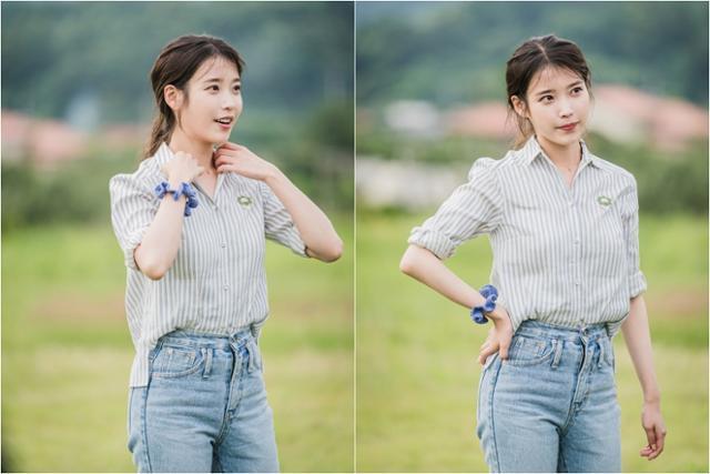 아이유가 '바퀴 달린 집'에 게스트로 출연한다. tvN 제공