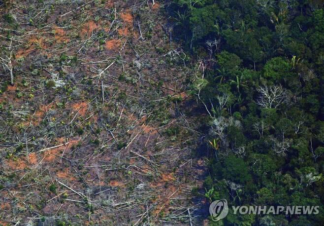 벌목으로 파괴된 아마존 열대우림. [AFP=연합뉴스 자료사진]