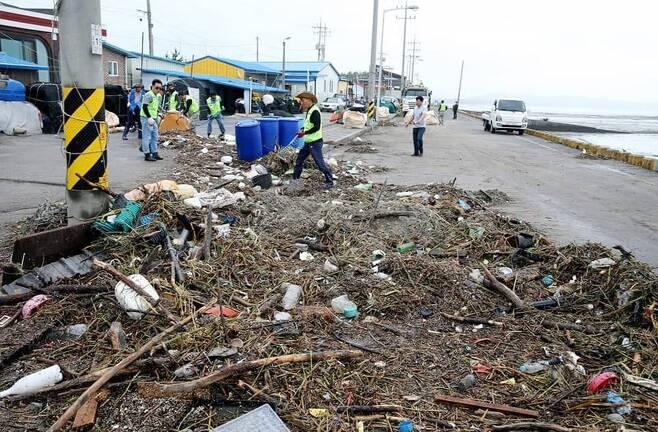 서천 도둔리 해변서 강풍으로 밀려온 쓰레기 치우는 공무원들 [서천군 제공. 재판매 및 DB 금지]