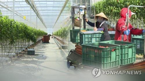 외국인 노동자(CG) [연합뉴스TV 제공]
