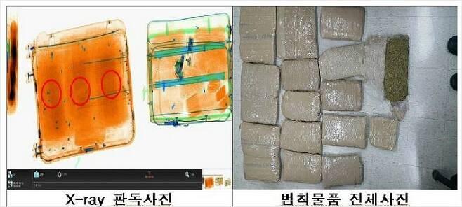 지난 2018년 세관이 김해 공항에서 남아프리카공화국 항공여행자의 캐리어를 검사해 비닐봉투에 넣고 유색 테이프로 감아 은닉한 대마초 18 ㎏을 적발했다.(사진=관세청 제공)