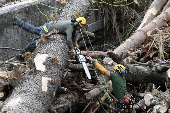 4일 프랑스 브레이 쉬르 로야 마을에서 구조대원들이 쓰러진 나무를 정리하고 있다. [AFP=연합뉴스]
