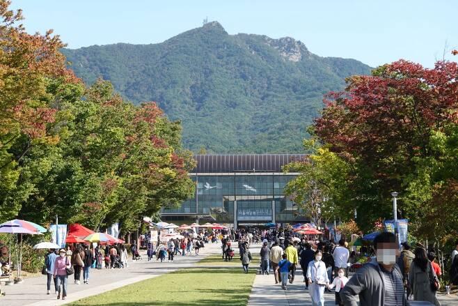 9일 오후 1시 30분쯤 서울대공원에 나들이를 나온 시민들이 파라솔에서 간식을 먹고, 나들이를 즐기고 있다. /이기우 기자