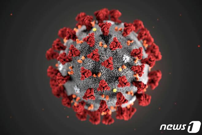 미국 CDC가 공개한 코로나19 모형도 © 로이터=뉴스1 © News1 이종덕 기자