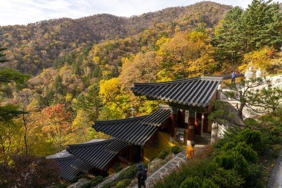 중대 사자암에서 바라본 오대산의 풍경이 그저 곱다. 산세를 따라 계단식으로 지은 절집의 모습도 그림 같다.