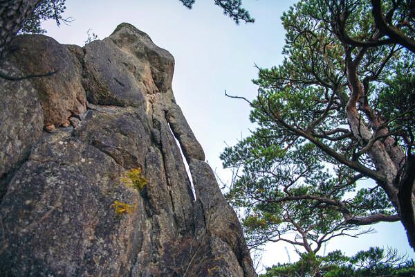 베틀바위전망대 바로 뒤 코끼리 형상의 바위.