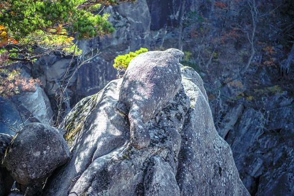 '산성12폭포' 옆 바위에 올라앉아 있는 거북바위.