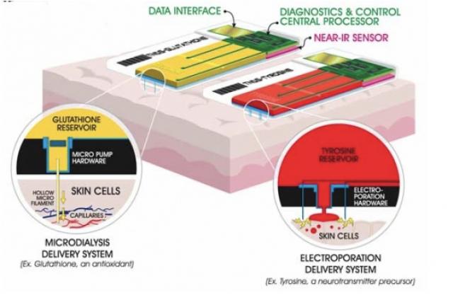 미 국방부가 개발 중인 TDNDS(Trandermal Nutrient Delivery System) 시스템 그래픽. / 출처=newatlas