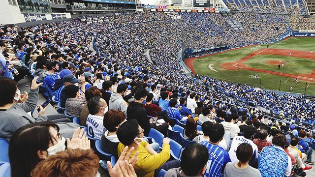 지난 1일 일본 가나가와현 요코하마스타디움에 야구팬이 가득 차 있다. 일본 정부는 도쿄올림픽을 앞두고 야구장 관중을 대상으로 코로나19 확산 실험을 진행했다. [사진 출처 : 연합뉴스]