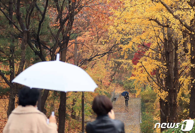 18일 오후 서울 종로구 경희궁에서 우산을 쓴 시민들이 산책을 하고 있다. 2020.11.18/뉴스1 © News1 구윤성 기자