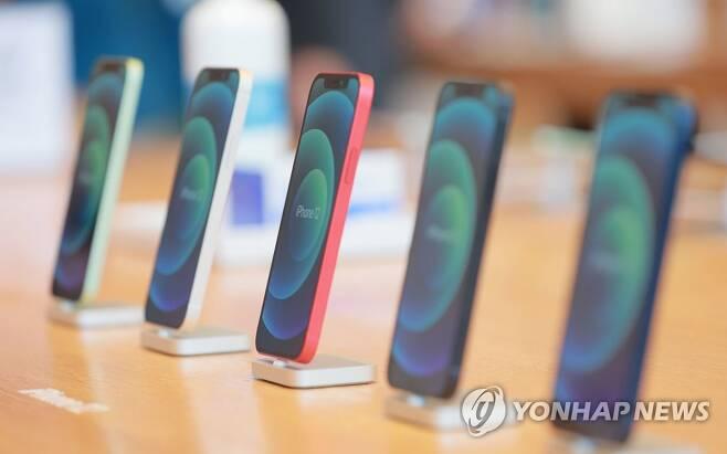 애플 신제품 아이폰12가 정식 출시된 지난달 30일 오전 서울 강남구 신사동 애플 가로수길 매장에 아이폰12가 진열돼 있다. [연합뉴스 자료사진]