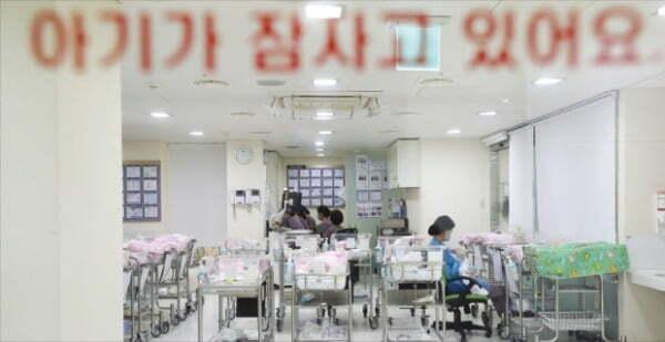 여성 한 명이 평생 낳을 아이를 의미하는 합계출산율은 2018년 1명 이하로 내려갔다. 비어가는 서울의 한 병원 신생아실.  연합뉴스