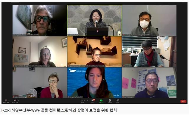 WWF,, 해양수산부 관계자들과 해외 전문가들이 서해 상괭이 보존을 위해 온라인으로 토론하고 있다. WWF제공
