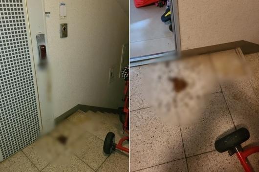 지난 28일 이 온라인 커뮤니티에 '아파트 현관문 앞에 똥테러 당했습니다'라는 제목의 글이 올라와 화제가 됐다/사진=온라인 커뮤니티