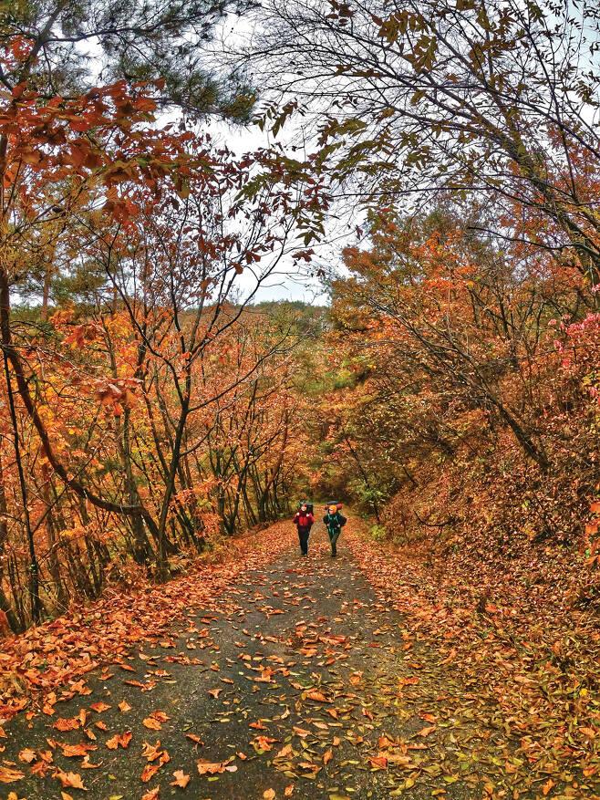 오랜만에 만난 동생들과 추억이 된 옛 산행 이야기를 하며 가을을 만끽했다.