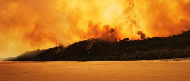 불길에 휩싸인 호주 프레이저 섬 전경