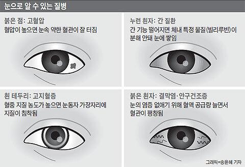 사진=조선일보 DB