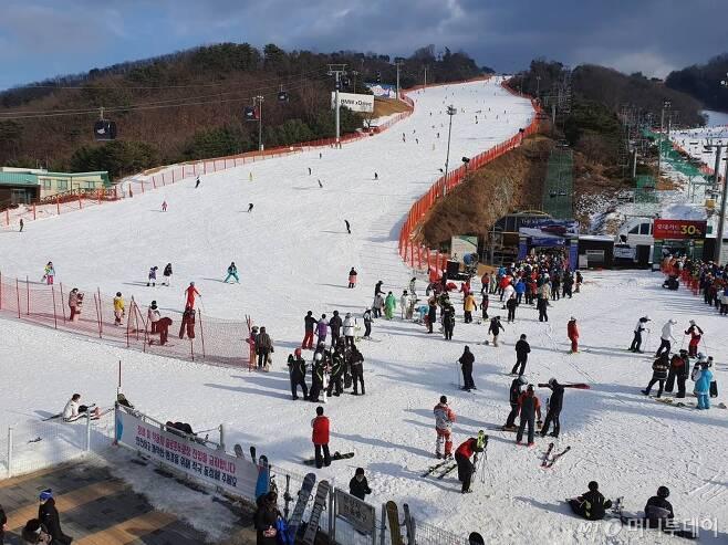 강원도내 스키장이 곳곳에서 개장된 가운데 지난 5일 오후 홍천군 비발디파크 스키장을 찾은 스키어들이 은빛 설원을 누비고 있다. /사진=뉴시스