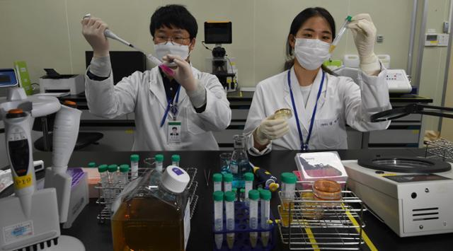 연구원들이 검체를 들고 검체 오염 여부 결과를 확인하고 있다.