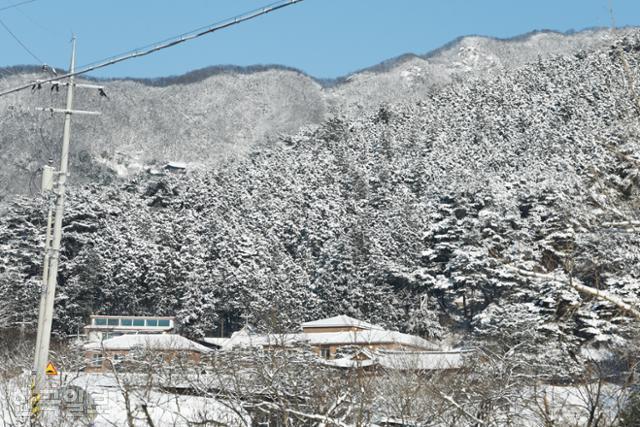 축령산 남쪽 산자락 추암마을 설경. 편백나무 숲이 널리 알려지면서 카페와 펜션, 별장 등이 곳곳에 들어섰다.