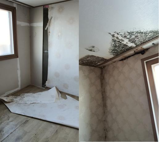 SH가 최근 공급한 서울 강서구 화곡동의 한 기존주택 매입임대 장기미임대 주택. /독자제공