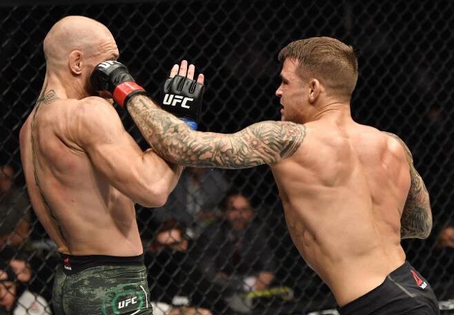 UFC 슈퍼스타 코너 맥그리거(왼쪽)가 UFC 257 대회 메인이벤트에서 더스틴 포이리에에게 펀치를 허용하고 있다. 사진=AP PHOTO