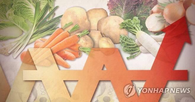 농산물 가격 상승 (PG) [제작 최자윤, 정연주] 일러스트
