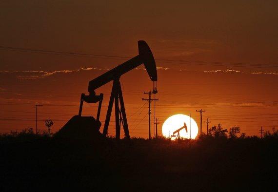{AP/뉴시스] 미국 텍사스주 퍼미언 분지 유전의 원유 펌프잭 /사진=뉴시스