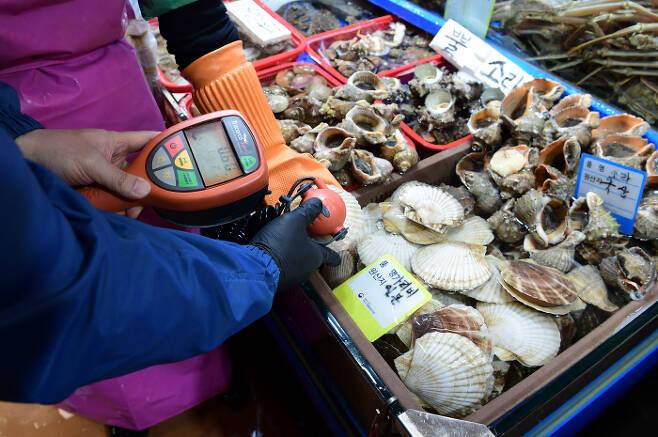 일본 정부가 후쿠시마 원전 오염수의 해양 방출 결정한 가운데 14일 서울 동작구 노량진수산물도매시장에서 직원이 일본산 가리비의 방사능 측정을 하고 있다. [한주형 기자]
