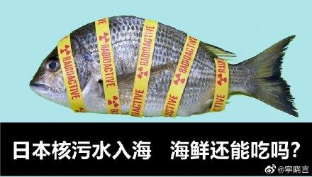 중국의 한 누리꾼이 일본 원전 발전소 오염수 방류와 관련해 해산물 소비에 대한 우려를 담은 포스터를 게재했다./출처=웨이보