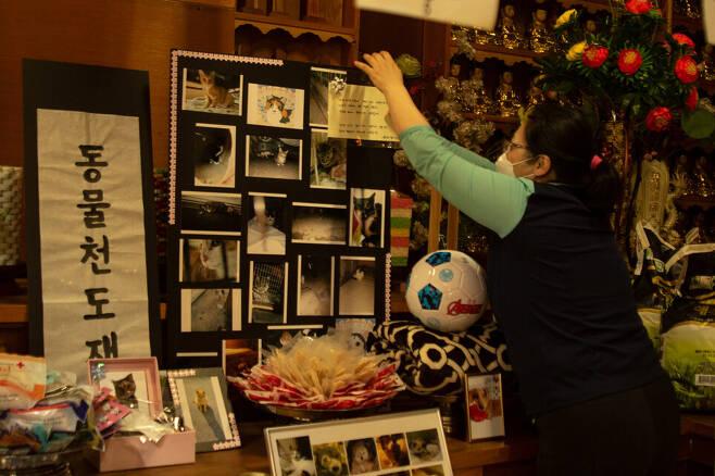 천도재 제단에는 동물들의 사진과 함께 생전에 아끼고 좋아했던 간식과 장난감 등이 놓였다. 봉우곰스튜디오 제공