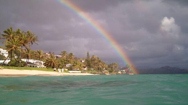 출처: Hawaii Aloha Travel