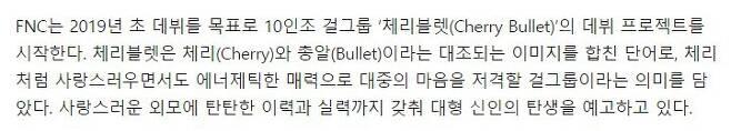 출처: [문화일보] FNC 새 걸그룹 데뷔..10인조 '체리블렛(Cherry Bullet)' 론칭