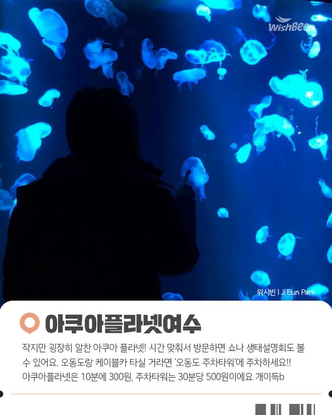 출처: 위시빈 l Ji Eun Park