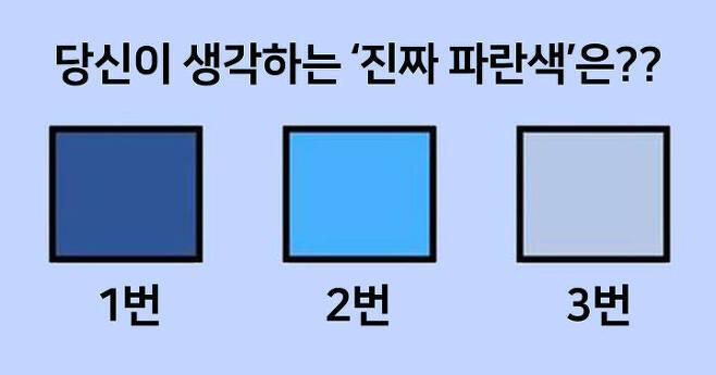 출처: 당신이 생각하는 '진짜 파란색'은?
