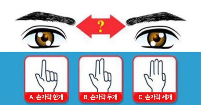 출처: 미간 넓이가 어떻게 되나요?