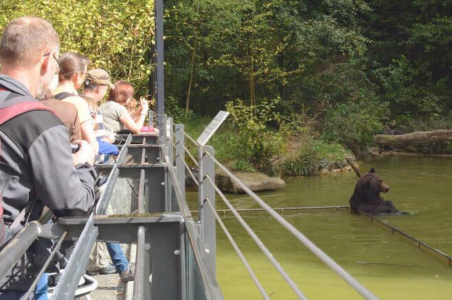 출처: ⓒ Langenberg Wildlife Park
