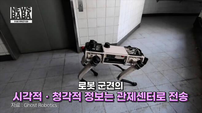 출처: Ghost Robotics