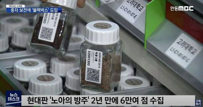 출처: 안동MBC '뉴스데스크' 캡처