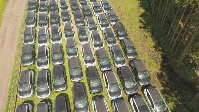 제주시 애월읍 한 목장 지대에 방치된 BMW 전기차