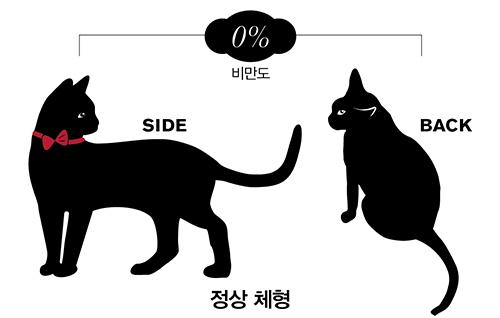 출처: dogue.co.kr